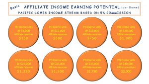Affiliate Income Stream Infographic
